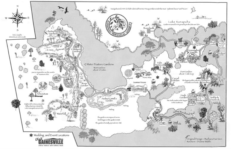 Map Back